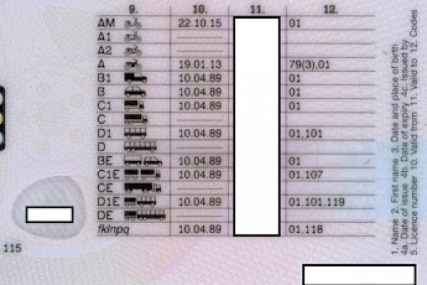 Driving Licence-Category D1 and D1+E